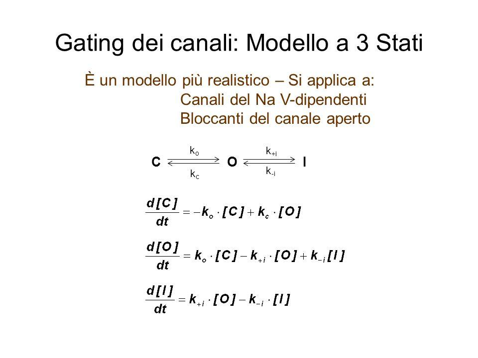 Gating dei canali: Modello a 3 Stati È un modello più realistico – Si applica a: Canali del Na V-dipendenti Bloccanti del canale aperto C O k +i k -i I koko kckc