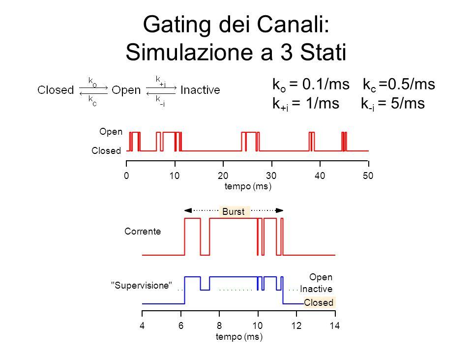 Gating dei Canali: Sovrapposizione con 3 Stati k o = 0.5/msk c =0.005/ms k +i = 0.25/msk -i = 0.025/ms 1.0 0.8 0.6 0.4 0.2 0.0 Open Prob 50403020100 tempo (ms) P open k +i = 0/msk -i = 0/ms