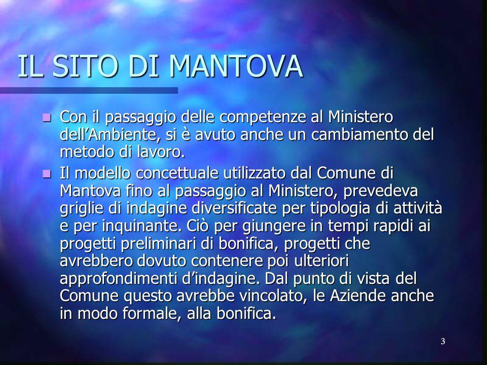 3 IL SITO DI MANTOVA Con il passaggio delle competenze al Ministero dell'Ambiente, si è avuto anche un cambiamento del metodo di lavoro.