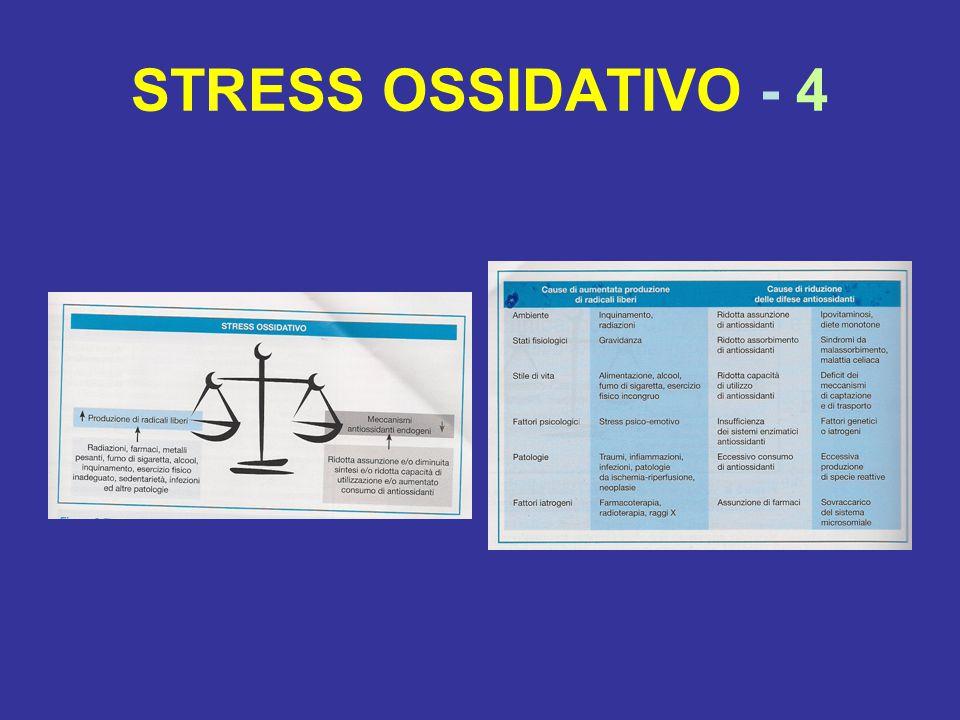 STRESS OSSIDATIVO - 4