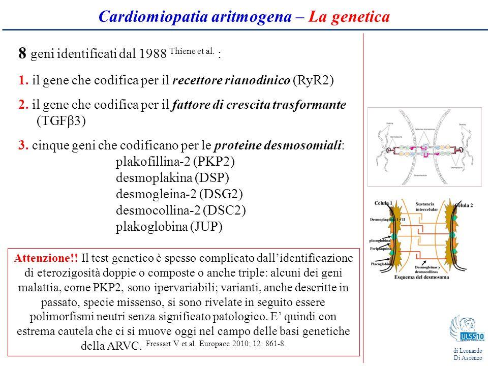 T neg Onda ε (29 %): potenziali di bassa ampiezza collocati all'inizio del tratto ST e rappresentano un ritardo dell'attivazione ventricolare di alcune fibre miocardiche del ventricolo destro.