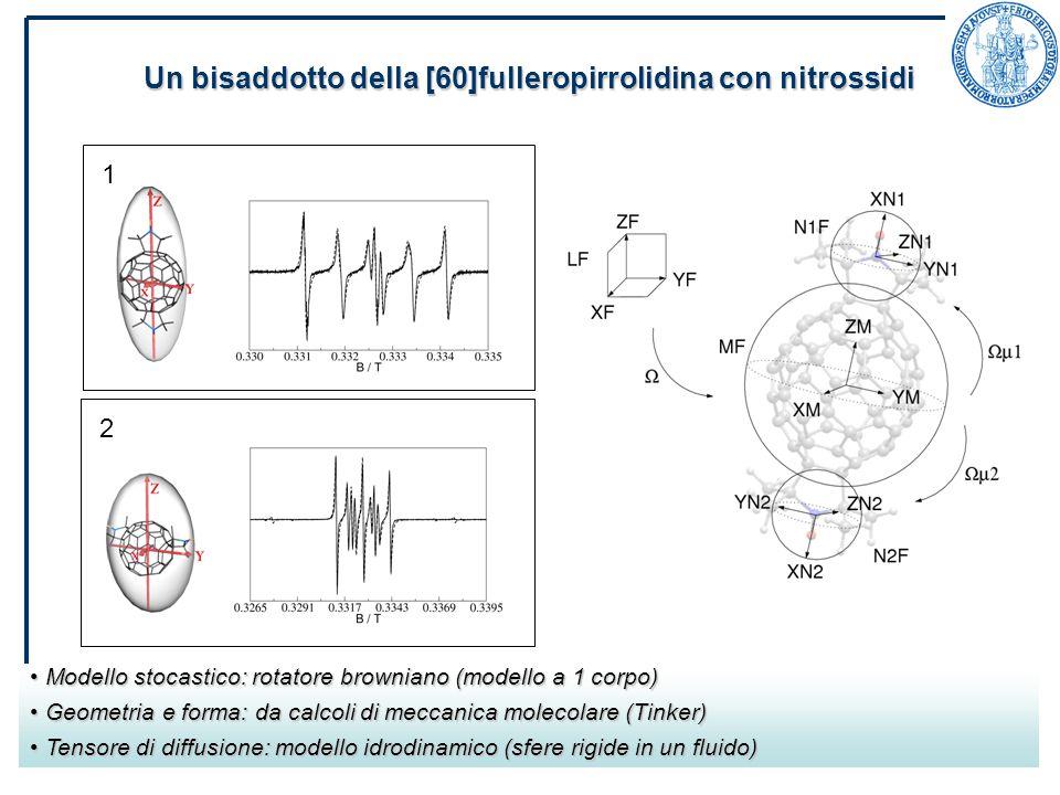 29/03/2007Riunione PON SCoPE Un bisaddotto della [60]fulleropirrolidina con nitrossidi Modello stocastico: rotatore browniano (modello a 1 corpo) Modello stocastico: rotatore browniano (modello a 1 corpo) Geometria e forma: da calcoli di meccanica molecolare (Tinker) Geometria e forma: da calcoli di meccanica molecolare (Tinker) Tensore di diffusione: modello idrodinamico (sfere rigide in un fluido) Tensore di diffusione: modello idrodinamico (sfere rigide in un fluido) 1 2