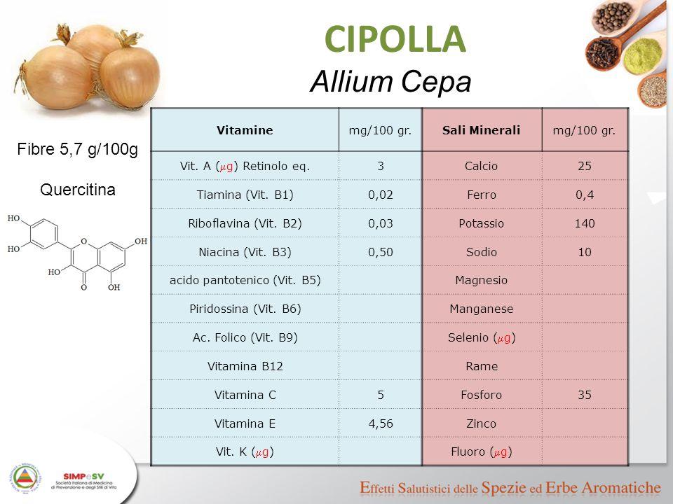 CIPOLLA Allium Cepa Vitaminemg/100 gr.Sali Mineralimg/100 gr. Vit. A (  g) Retinolo eq. 3Calcio25 Tiamina (Vit. B1)0,02Ferro0,4 Riboflavina (Vit. B2)