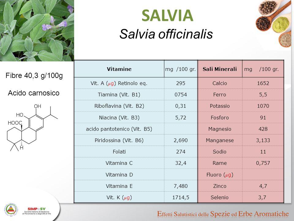 Vitaminemg/100 gr.Sali Mineralimg/100 gr. Vit. A (  g) Retinolo eq. 295Calcio1652 Tiamina (Vit. B1)0754Ferro5,5 Riboflavina (Vit. B2)0,31Potassio1070