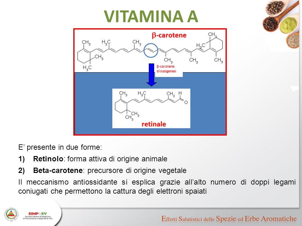 VITAMINA A E' presente in due forme: 1)Retinolo: forma attiva di origine animale 2)Beta-carotene: precursore di origine vegetale Il meccanismo antioss