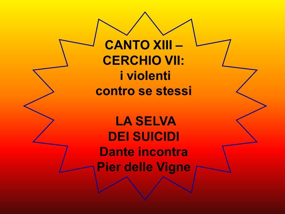CANTO XIII – CERCHIO VII: i violenti contro se stessi LA SELVA DEI SUICIDI Dante incontra Pier delle Vigne
