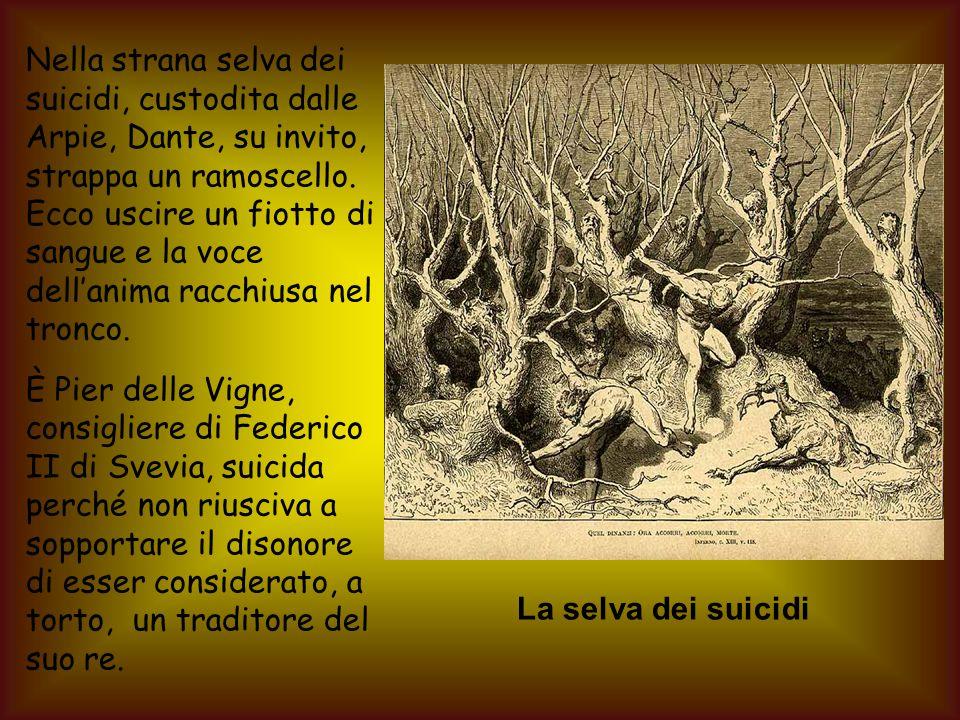 Nella strana selva dei suicidi, custodita dalle Arpie, Dante, su invito, strappa un ramoscello.