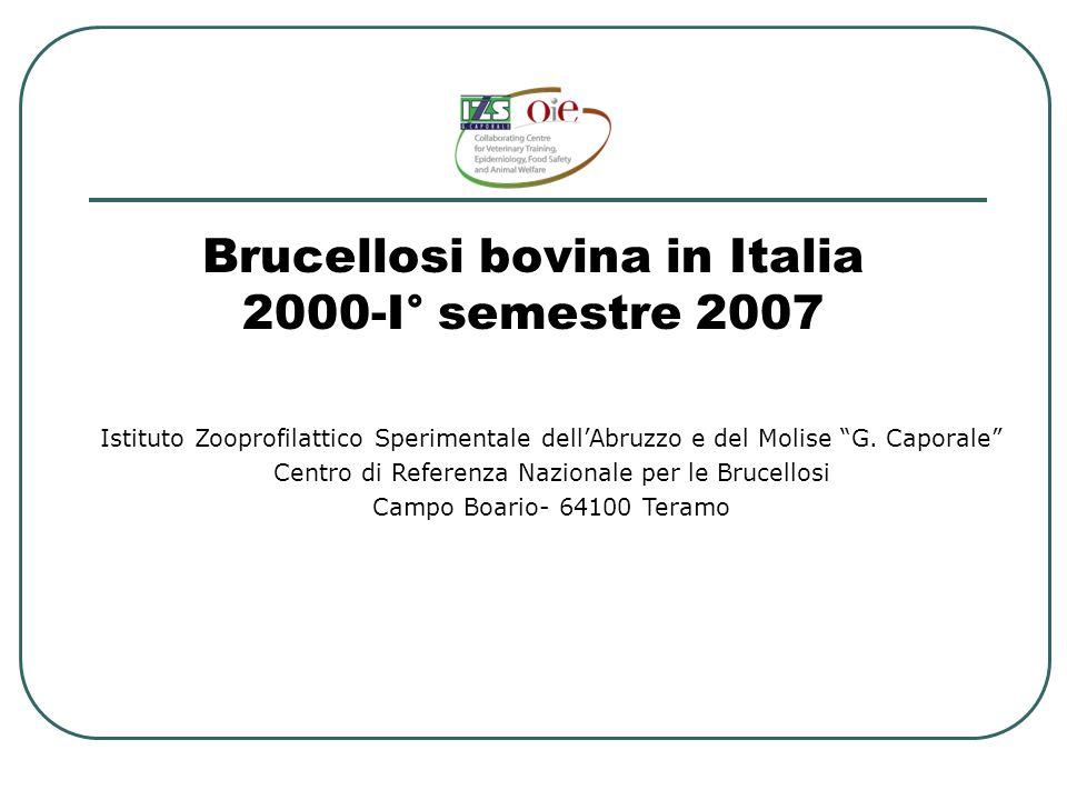"""Brucellosi bovina in Italia 2000-I° semestre 2007 Istituto Zooprofilattico Sperimentale dell'Abruzzo e del Molise """"G. Caporale"""" Centro di Referenza Na"""