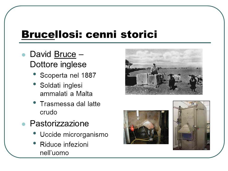 Brucellosi: cenni storici David Bruce – Dottore inglese Scoperta nel 1887 Soldati inglesi ammalati a Malta Trasmessa dal latte crudo Pastorizzazione U