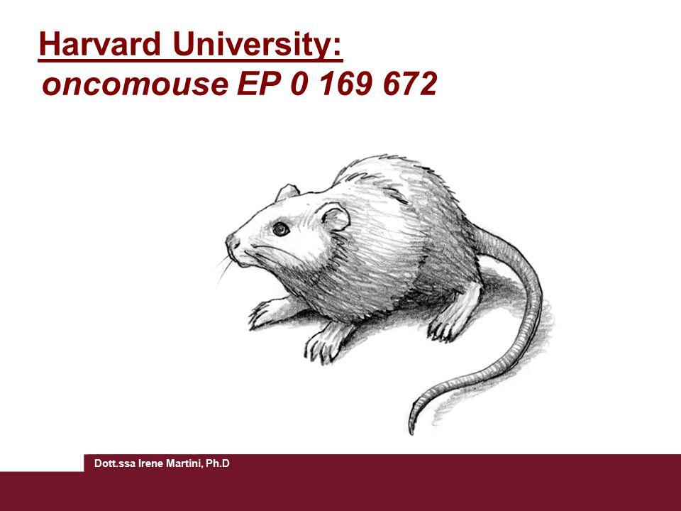 Dott.ssa Irene Martini, Ph.D Harvard University: oncomouse EP 0 169 672
