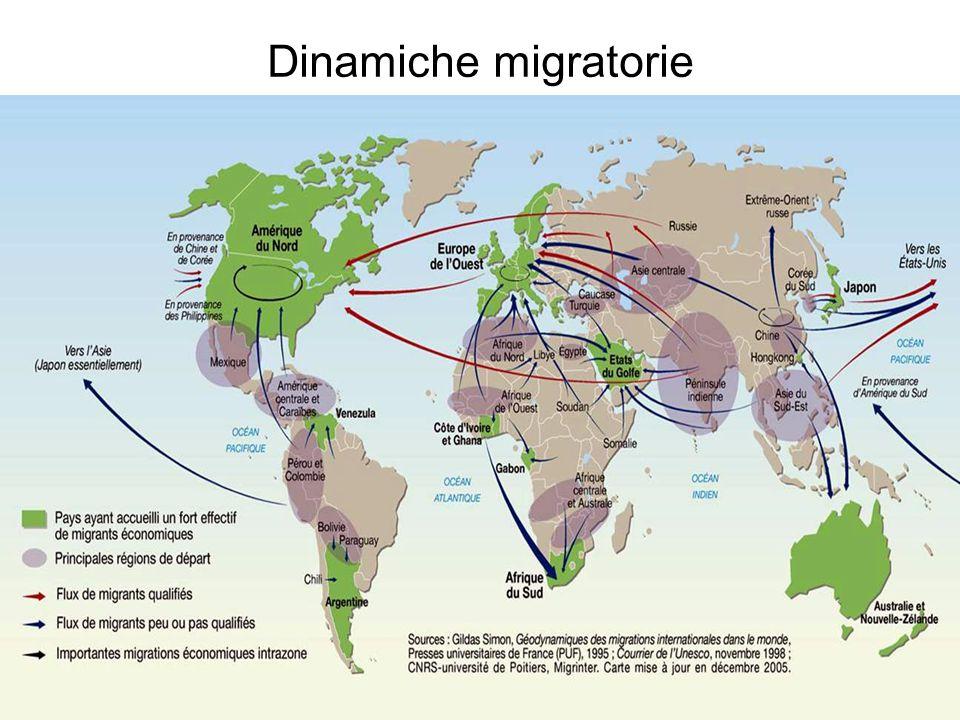 Dinamiche migratorie