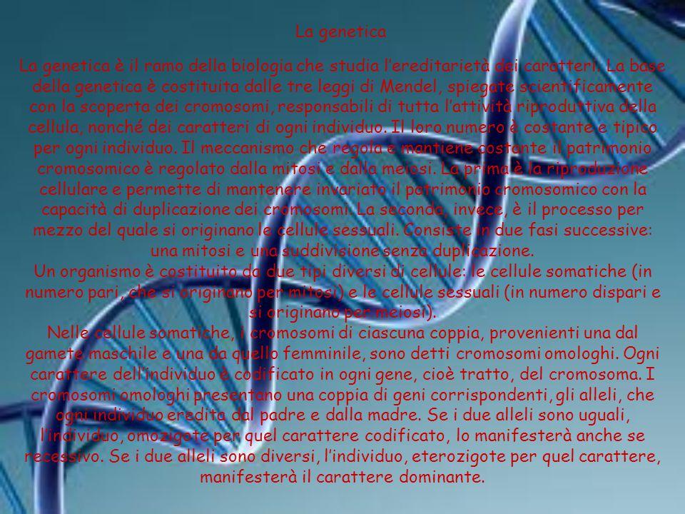 La genetica La genetica è il ramo della biologia che studia l'ereditarietà dei caratteri. La base della genetica è costituita dalle tre leggi di Mende