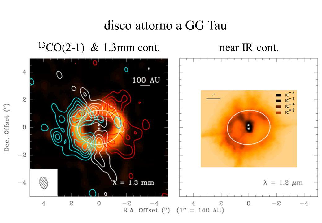 disco attorno a GG Tau 13 CO(2-1) & 1.3mm cont.near IR cont.