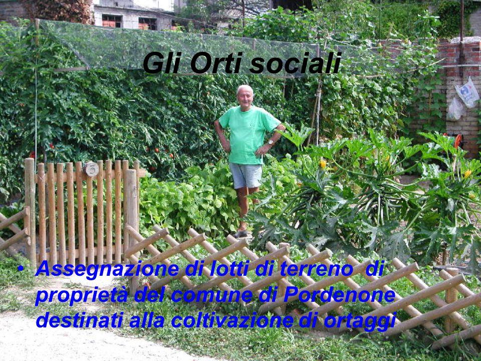 Gli Orti sociali Assegnazione di lotti di terreno di proprietà del comune di Pordenone destinati alla coltivazione di ortaggi