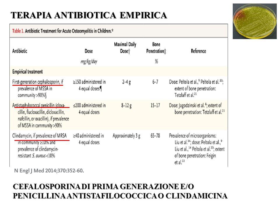 TERAPIA ANTIBIOTICA EMPIRICA CEFALOSPORINA DI PRIMA GENERAZIONE E/O PENICILLINA ANTISTAFILOCOCCICA O CLINDAMICINA