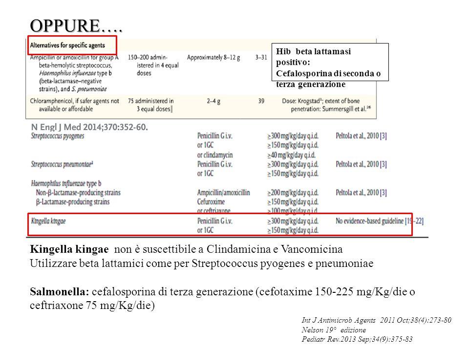 OPPURE…. Hib beta lattamasi positivo: Cefalosporina di seconda o terza generazione Int J Antimicrob Agents 2011 Oct;38(4):273-80 Nelson 19° edizione P