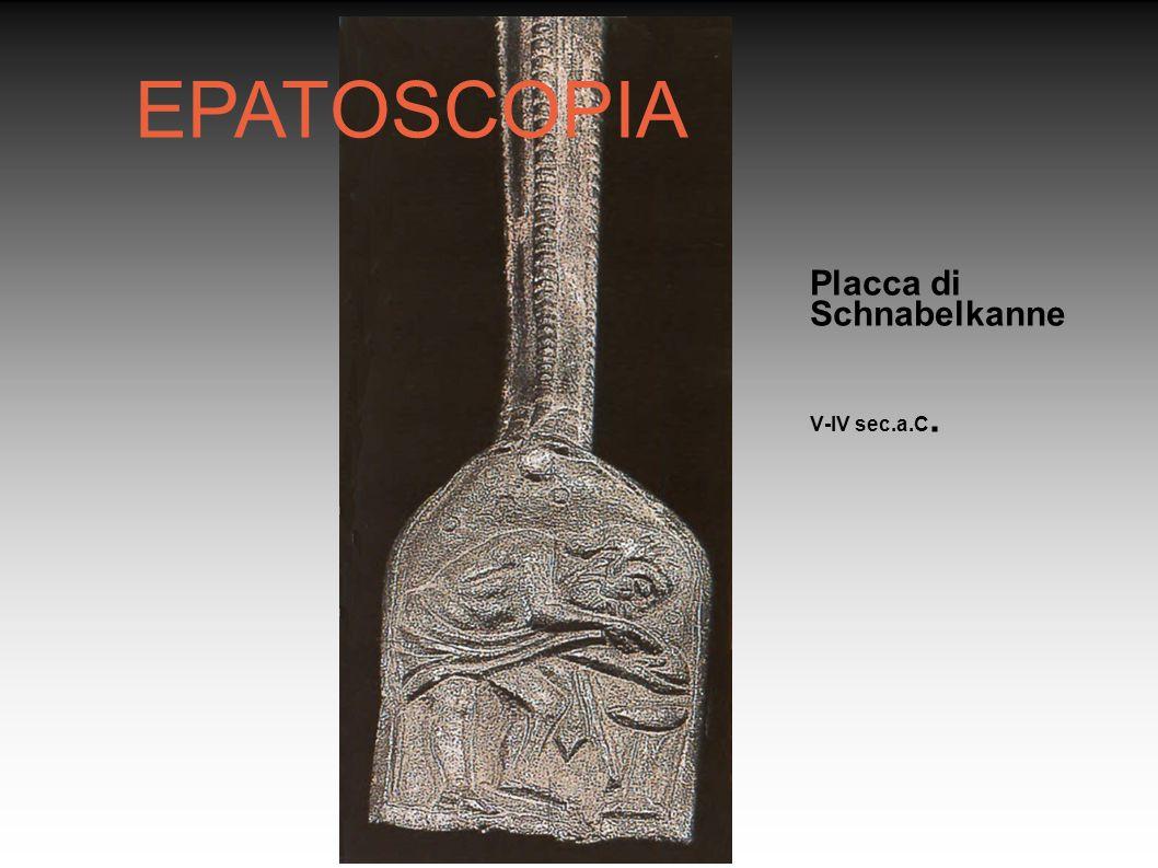 Rosanna Guerzoni Placca di Schnabelkanne V-IV sec.a.C. EPATOSCOPIA