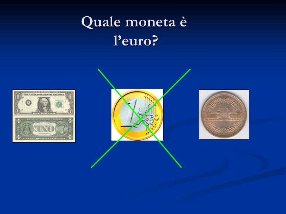 Quale moneta è l'euro