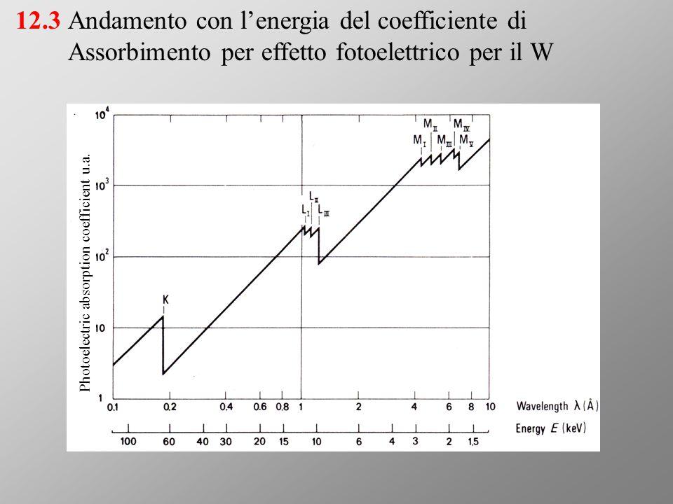 Andamento con l'energia del coefficiente di Assorbimento per effetto fotoelettrico per il W 12.3 Photoelectric absorption coefficient u.a.