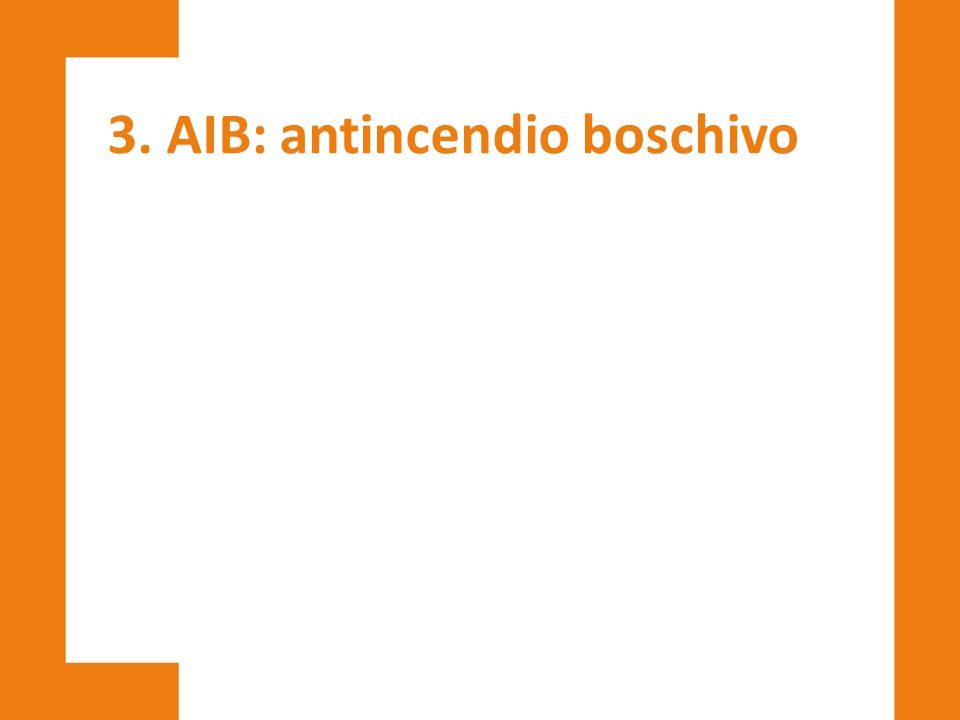 3. AIB: antincendio boschivo