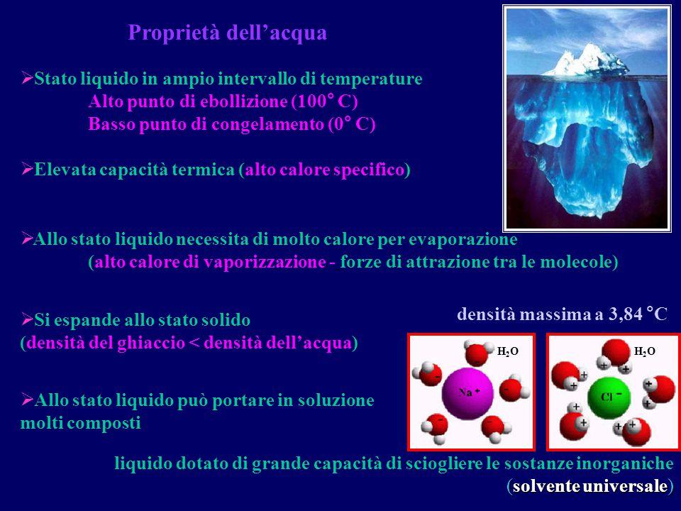 Proprietà dell'acqua  Stato liquido in ampio intervallo di temperature Alto punto di ebollizione (100° C) Basso punto di congelamento (0° C)  Elevat