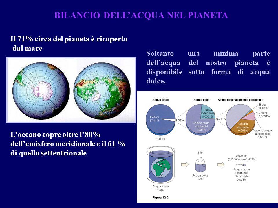 BILANCIO DELL'ACQUA NEL PIANETA Il 71% circa del pianeta è ricoperto dal mare Soltanto una minima parte dell'acqua del nostro pianeta è disponibile so