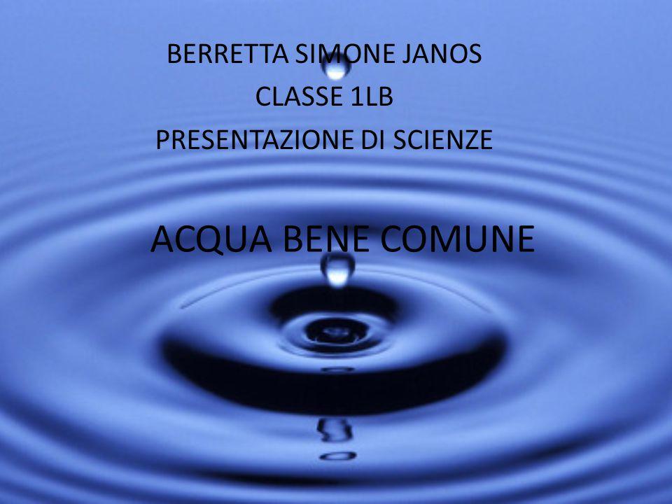 ACQUA BENE COMUNE BERRETTA SIMONE JANOS CLASSE 1LB PRESENTAZIONE DI SCIENZE