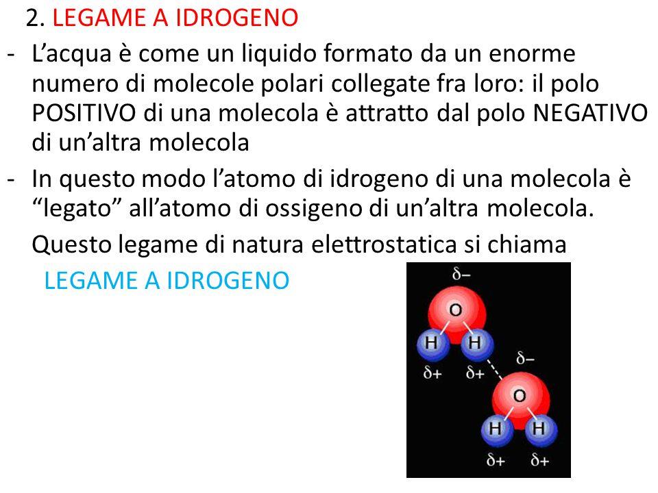 2. LEGAME A IDROGENO -L'acqua è come un liquido formato da un enorme numero di molecole polari collegate fra loro: il polo POSITIVO di una molecola è