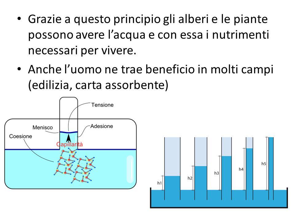 Grazie a questo principio gli alberi e le piante possono avere l'acqua e con essa i nutrimenti necessari per vivere. Anche l'uomo ne trae beneficio in