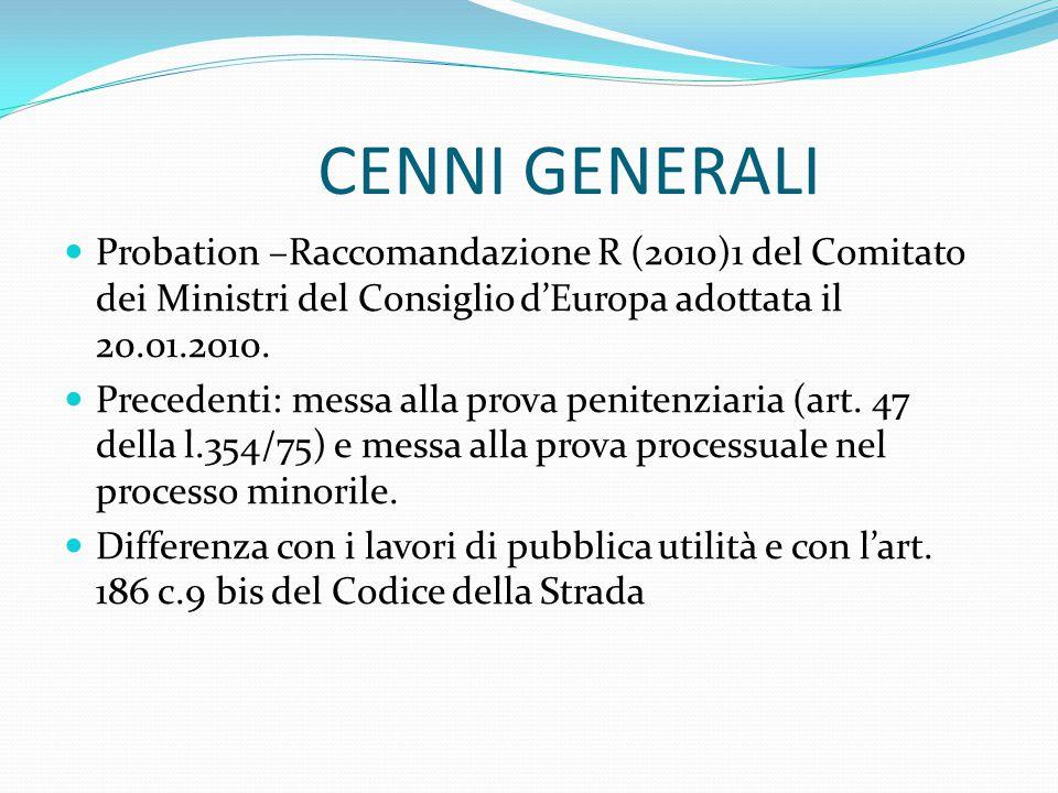 CENNI GENERALI Probation –Raccomandazione R (2010)1 del Comitato dei Ministri del Consiglio d'Europa adottata il 20.01.2010.
