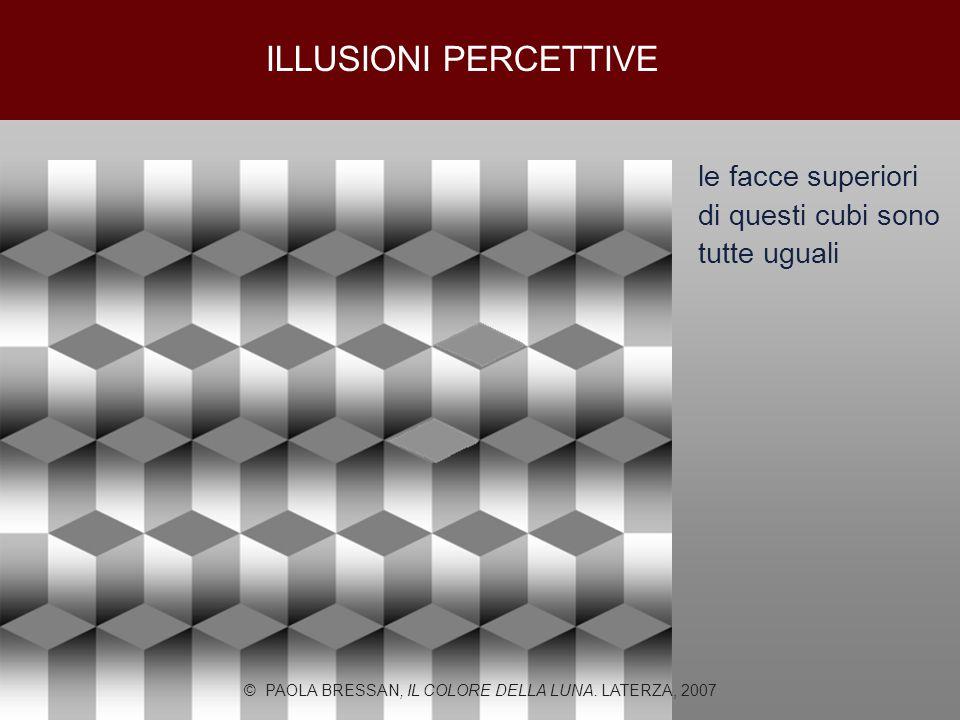 le facce superiori di questi cubi sono tutte uguali © PAOLA BRESSAN, IL COLORE DELLA LUNA. LATERZA, 2007 ILLUSIONI PERCETTIVE