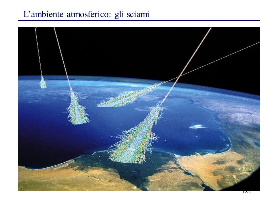 182 L'ambiente atmosferico: gli sciami