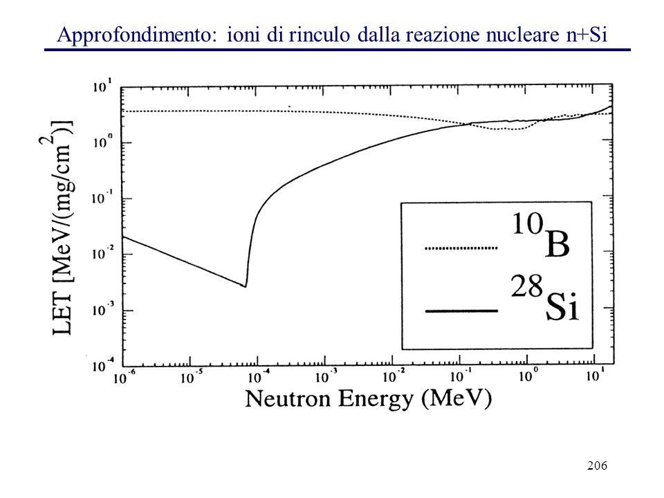 206 Approfondimento: ioni di rinculo dalla reazione nucleare n+Si