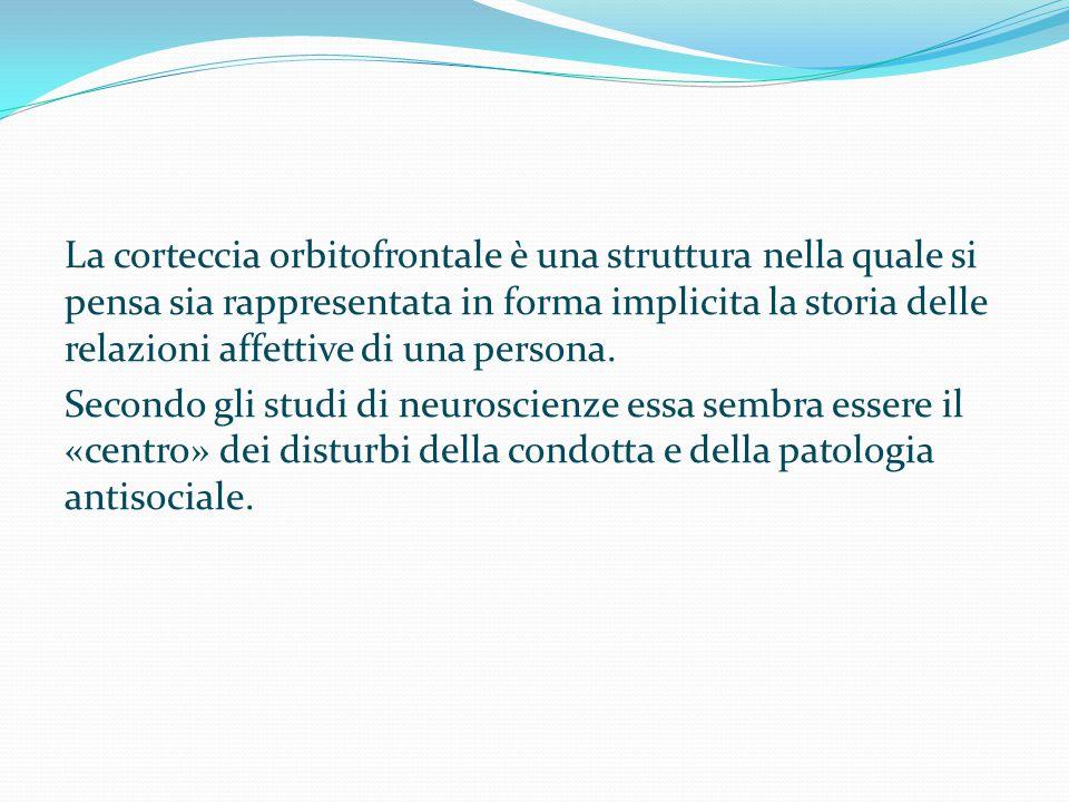 La corteccia orbitofrontale è una struttura nella quale si pensa sia rappresentata in forma implicita la storia delle relazioni affettive di una perso
