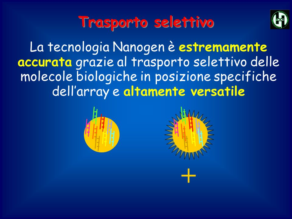 + La tecnologia Nanogen è estremamente accurata grazie al trasporto selettivo delle molecole biologiche in posizione specifiche dell'array e altamente