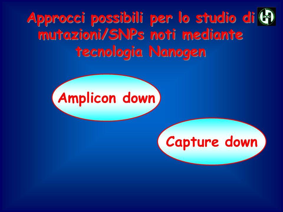 Approcci possibili per lo studio di mutazioni/SNPs noti mediante tecnologia Nanogen Capture down Amplicon down
