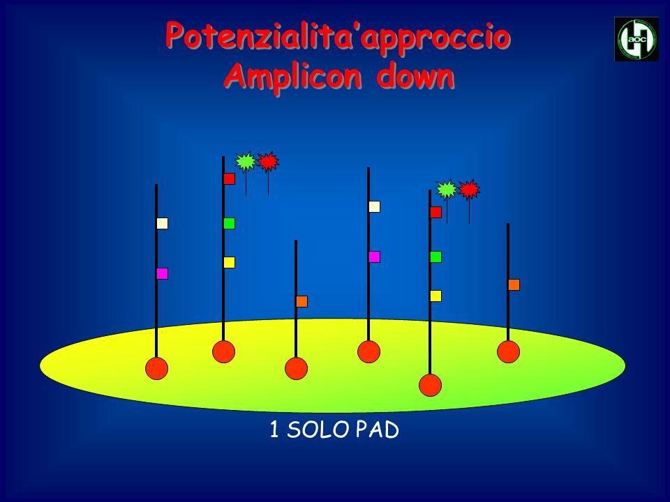 Potenzialita'approccio Amplicon down Potenzialita'approccio Amplicon down 1 SOLO PAD
