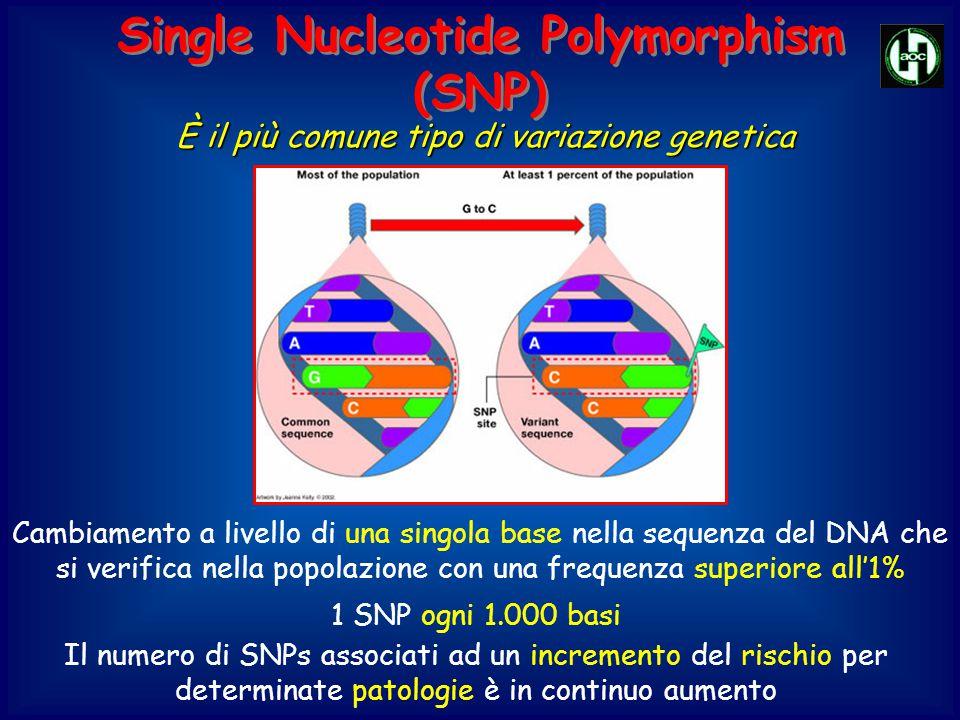 Single Nucleotide Polymorphism (SNP) Single Nucleotide Polymorphism (SNP) Cambiamento a livello di una singola base nella sequenza del DNA che si veri