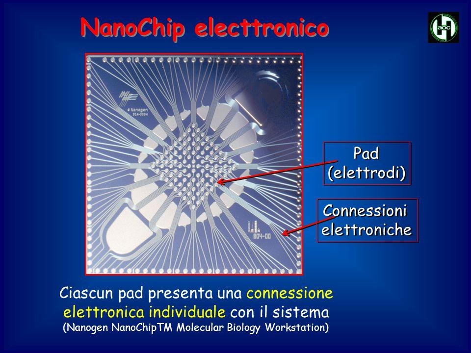 Pad (elettrodi) Pad (elettrodi) Connessioni elettroniche Connessioni elettroniche Ciascun pad presenta una connessione elettronica individuale con il