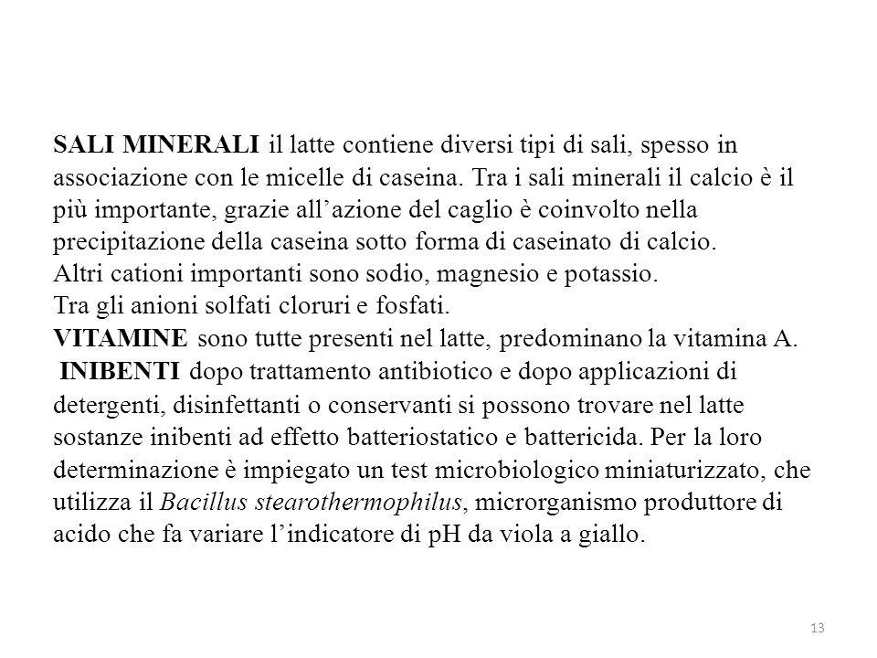 SALI MINERALI il latte contiene diversi tipi di sali, spesso in associazione con le micelle di caseina.