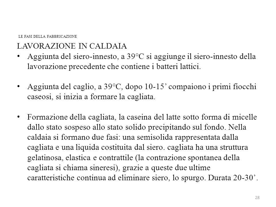 LE FASI DELLA FABBRICAZIONE 28 LAVORAZIONE IN CALDAIA Aggiunta del siero-innesto, a 39°C si aggiunge il siero-innesto della lavorazione precedente che contiene i batteri lattici.
