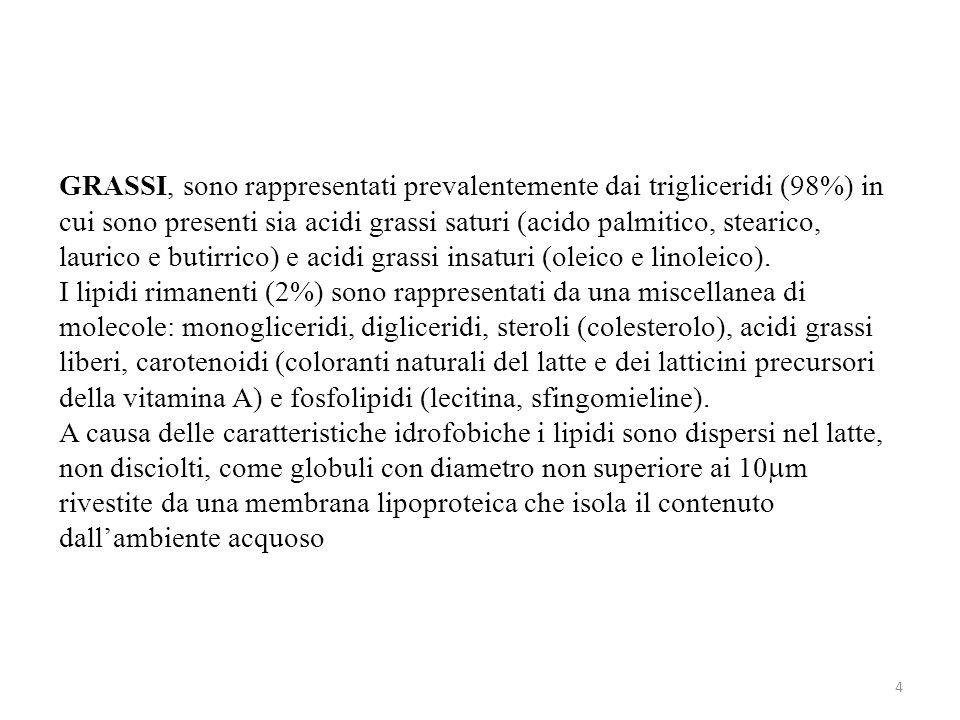 GRASSI, sono rappresentati prevalentemente dai trigliceridi (98%) in cui sono presenti sia acidi grassi saturi (acido palmitico, stearico, laurico e butirrico) e acidi grassi insaturi (oleico e linoleico).