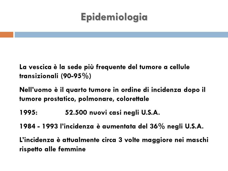 Epidemiologia La vescica è la sede più frequente del tumore a cellule transizionali (90-95%) Nell'uomo è il quarto tumore in ordine di incidenza dopo il tumore prostatico, polmonare, colorettale 1995:52.500 nuovi casi negli U.S.A.