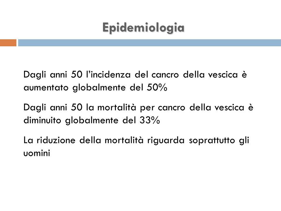 Epidemiologia Dagli anni 50 l'incidenza del cancro della vescica è aumentato globalmente del 50% Dagli anni 50 la mortalità per cancro della vescica è diminuito globalmente del 33% La riduzione della mortalità riguarda soprattutto gli uomini