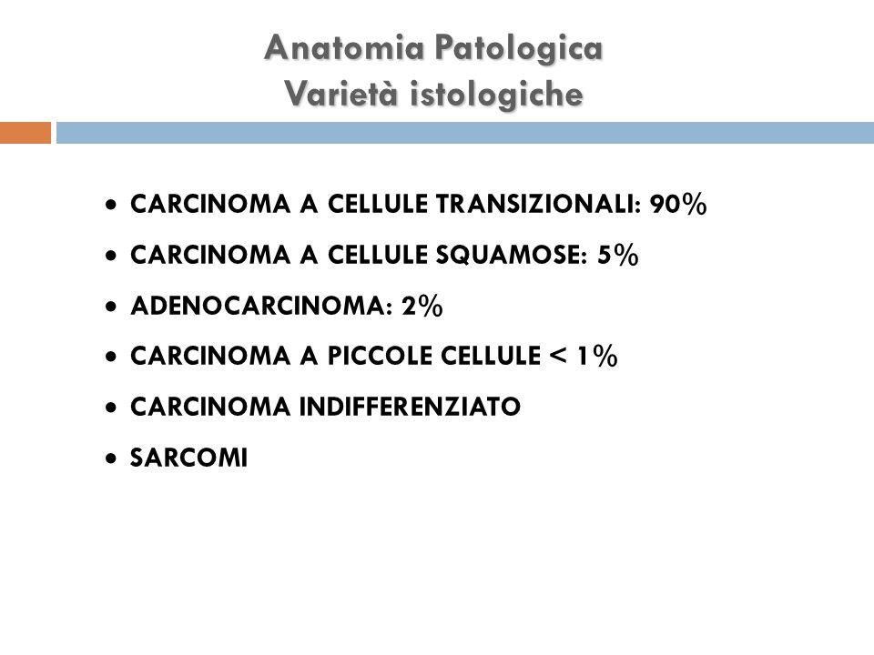 Anatomia Patologica Varietà istologiche  CARCINOMA A CELLULE TRANSIZIONALI: 90%  CARCINOMA A CELLULE SQUAMOSE: 5%  ADENOCARCINOMA: 2%  CARCINOMA A PICCOLE CELLULE < 1%  CARCINOMA INDIFFERENZIATO  SARCOMI