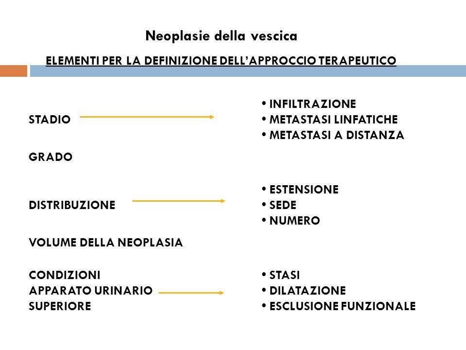 Neoplasie della vescica ELEMENTI PER LA DEFINIZIONE DELL'APPROCCIO TERAPEUTICO INFILTRAZIONE STADIO METASTASI LINFATICHE METASTASI A DISTANZA GRADO ESTENSIONE DISTRIBUZIONE SEDE NUMERO VOLUME DELLA NEOPLASIA CONDIZIONI STASI APPARATO URINARIO DILATAZIONE SUPERIORE ESCLUSIONE FUNZIONALE