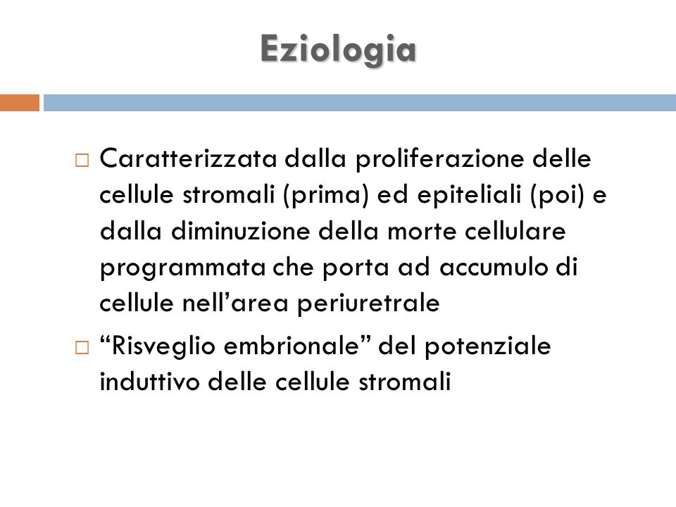 Eziologia  Caratterizzata dalla proliferazione delle cellule stromali (prima) ed epiteliali (poi) e dalla diminuzione della morte cellulare programmata che porta ad accumulo di cellule nell'area periuretrale  Risveglio embrionale del potenziale induttivo delle cellule stromali