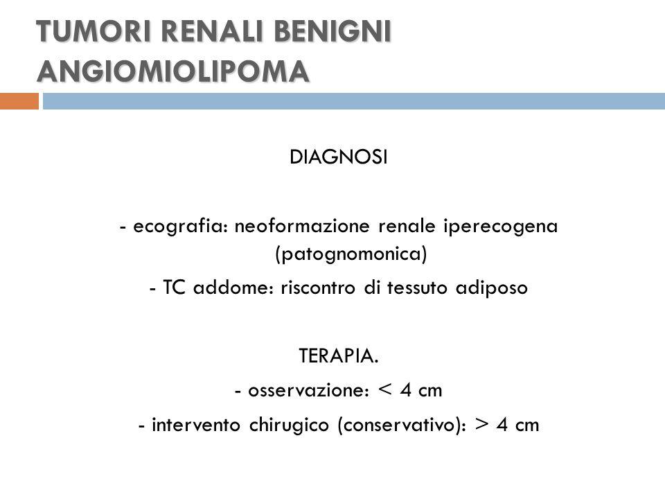 TUMORI RENALI BENIGNI ANGIOMIOLIPOMA DIAGNOSI - ecografia: neoformazione renale iperecogena (patognomonica) - TC addome: riscontro di tessuto adiposo TERAPIA.