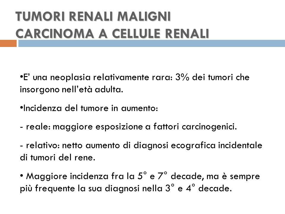 TUMORI RENALI MALIGNI CARCINOMA A CELLULE RENALI E' una neoplasia relativamente rara: 3% dei tumori che insorgono nell'età adulta.