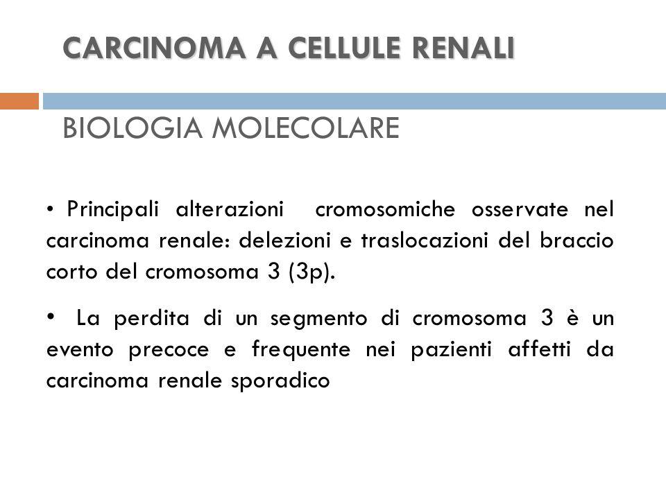 CARCINOMA A CELLULE RENALI CARCINOMA A CELLULE RENALI BIOLOGIA MOLECOLARE Principali alterazioni cromosomiche osservate nel carcinoma renale: delezioni e traslocazioni del braccio corto del cromosoma 3 (3p).